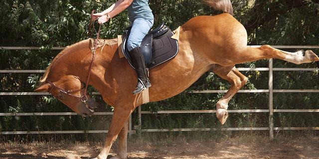 bockendes pferd, reiten angst, ängstlicher reiter, angst vorm fallen