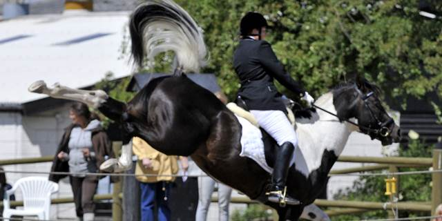 angst beim reiten, angst pferd, pferd buckelt, pferd bockt